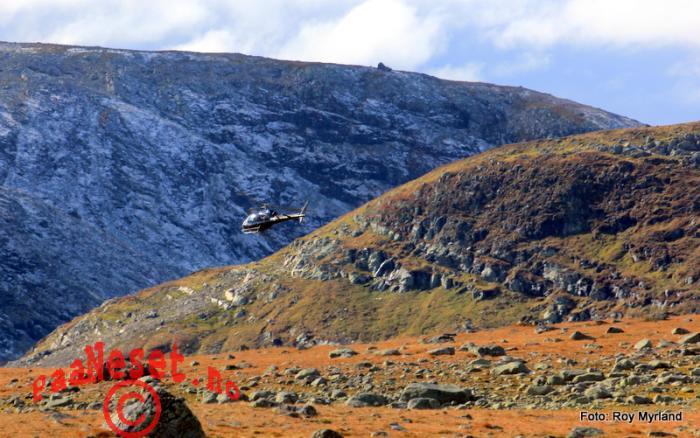 5 Helikopter Valdresflye Reinsanking Foto Roy Myrland