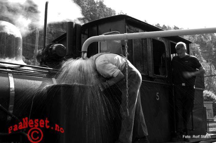 Damp Tog Veteran Jernbane Setesdalsbanen Foto Rolf Støen