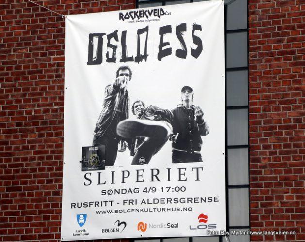 Oslo Ess til Hammerdalen i Larvik