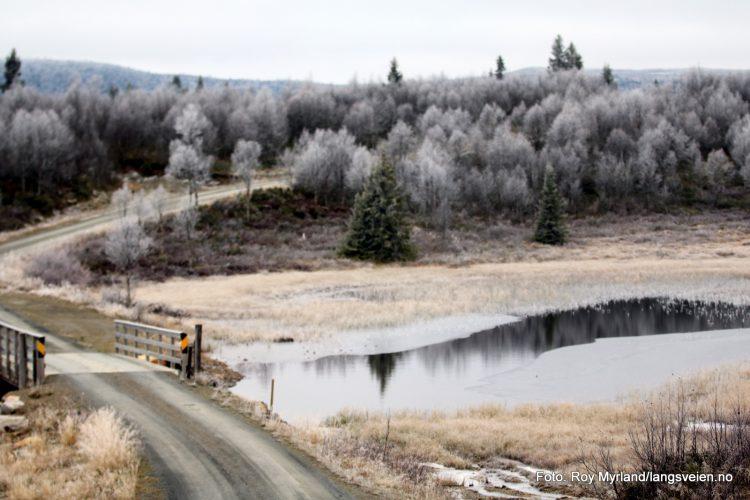 Skrautvål sameie Svarthamar Nord Aurdal foto roy myrland