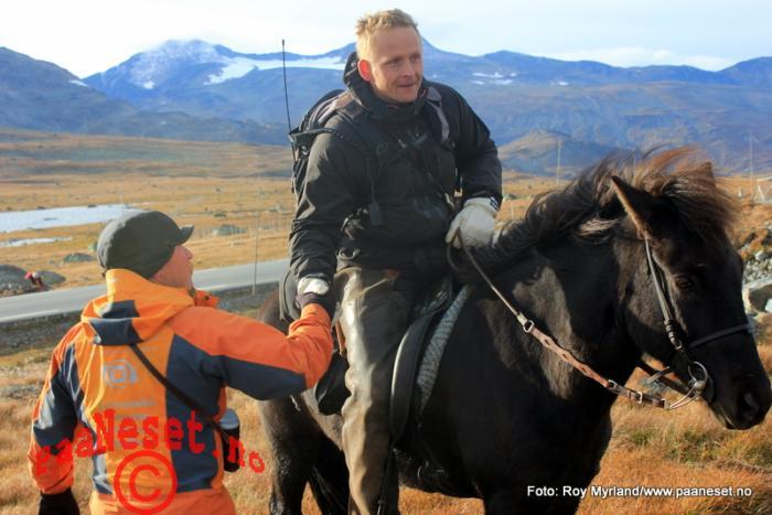 Takk Tamreinlag Valdres Valdresflye Vågå Tamrein Reinsanking Foto Roy Myrland