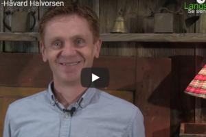 """Mø sjåast"". -Håvard Halvorsen (Ap), varaordfører Nord-Aurdal kommune"